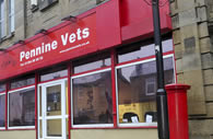Commercial_vets_small